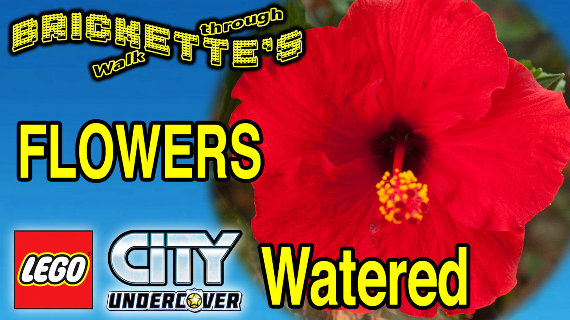 LCU FLOWERS WATERED